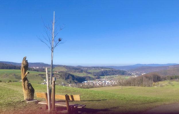 Blick über Bubendorf