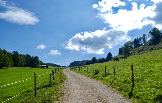 Aufstieg Mét. du Mont Dessus
