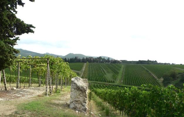 Blick zurück nach San Felice