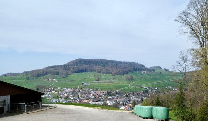 Blick vom Weidhof über Ormalingen zur Farnsburg