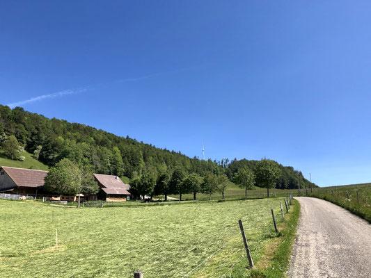 Auf dem Weg zum Vogelberg