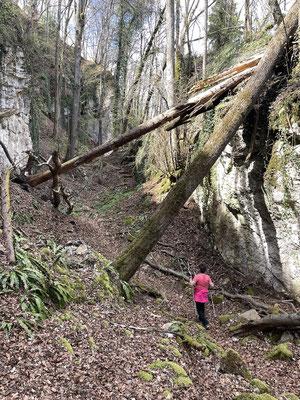 Weg durch die zerklüfteten Felsen
