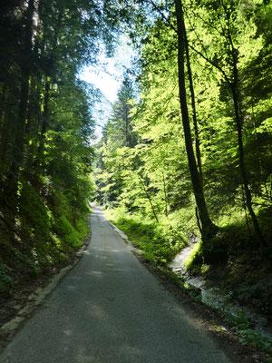 Aufstieg zum Schindelberg