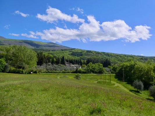 """Blick über den Giardino und rechts untern """"Fruchtbare Erde"""", Luigi Mainolfi"""