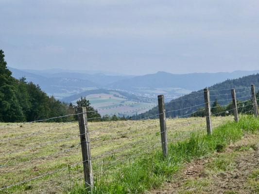 Blick Richtung Delsberg