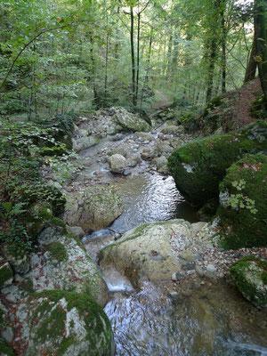 Im Chastelbachtal
