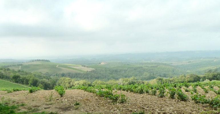 Blick von Brolio Richtung Süden