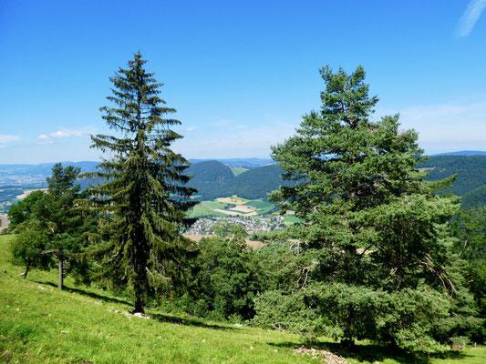 Blick über Montsevelier