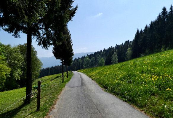 Abstieg nach Herbertswil