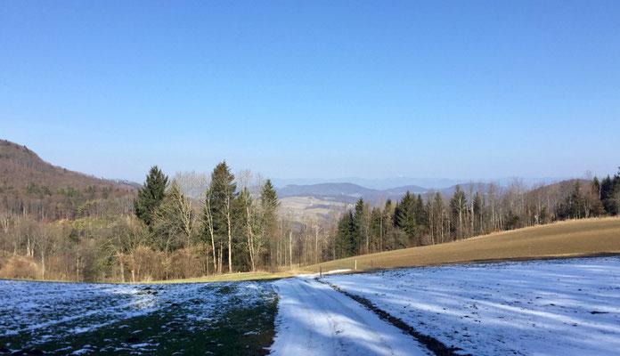 Blick über das Homburgertal