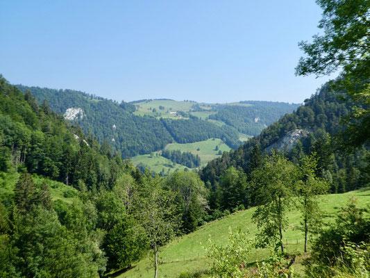 Blick zum Schöneberg
