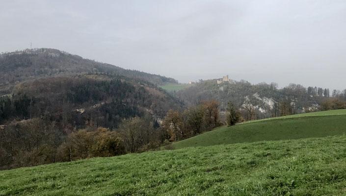 Blick zum Schloss Pfeffingen