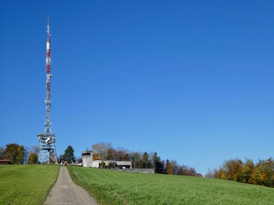 Oben beim Turm