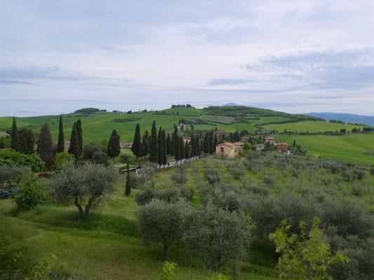 Anfahrtsstrasse von Monticchiello