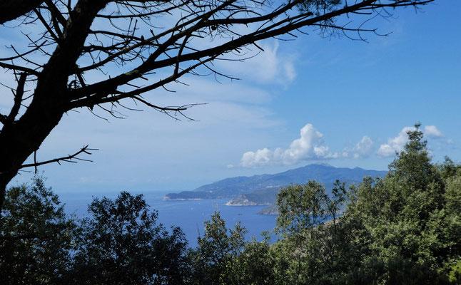 Südküste von Elba