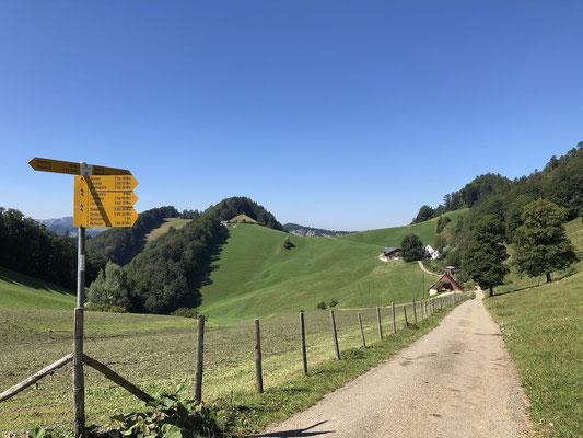 Abzweige vor dem Hof Ulmer