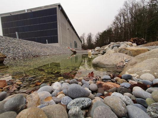 Biodiversität duch Umgebungsgestaltung auf Industriegelände