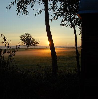 "Bei Sonnenaufgang starten wir zum ""Forster Morgenrot"""