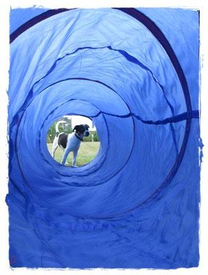 Tunnel kenne ich aus Verl - aber alleine ist blöd :)