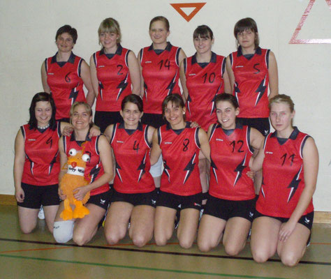 Damen 4. Liga 2008/2009