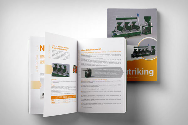 Folleto institucional / Corporate brochure