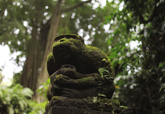 Ubud - Monkey Forest