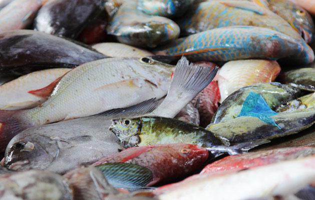 Fischmarkt Victoria -  Mahe