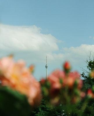 Stuttgart - Fernsehturm