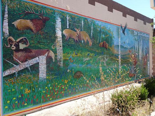 Tucson (AZ)