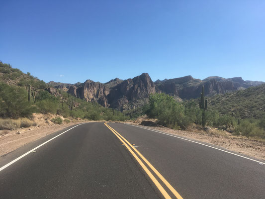 Sur la route d'Apache Lake (Arizona)