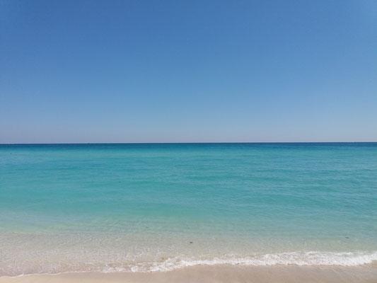 North Miami Beach (Floride)