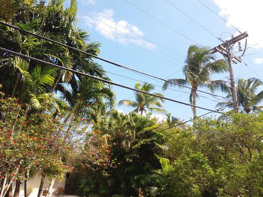 Coral Gables, Miami (Floride)