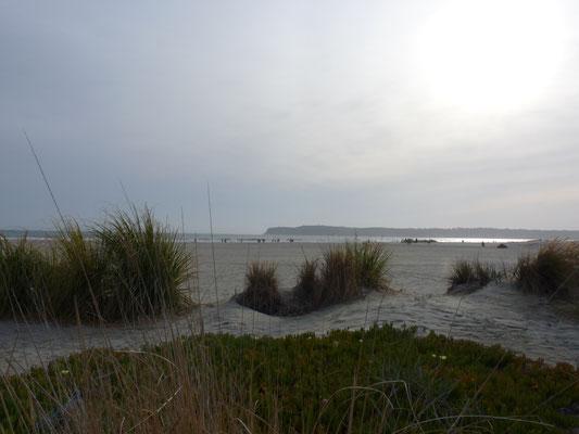 Vue sur Coronado Beach