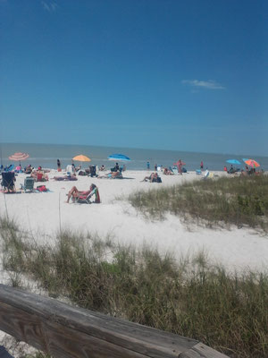 Lowdermilk Park Beach l