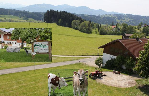 Bauernhof mit Ferienwohnungen