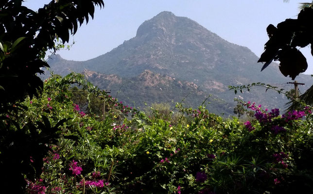 Der Arunachala vom Moutain Retreat aus