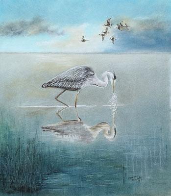 Graureiher, Öl-Pastellkreide, 40 x 46 cm, 2019   Preis auf Anfrage