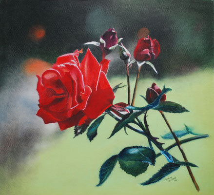 Rose, Öl-Pastellkreide, 38 x 42 cm, 2015