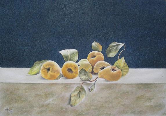 Stillleben mit Quitten, Öl-Pastellkreide, 40 x 56 cm, 2017