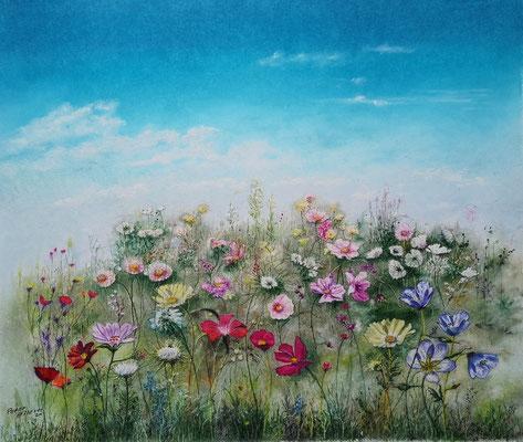 Streublumen-Wiese, Öl-Pastellkreide, 47 x 55 cm, 2021