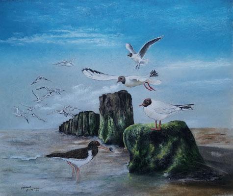 Vogelflug, Öl-Pastellkreide, 44 x 53 cm, 2021