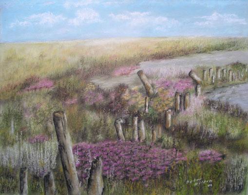 Salzwiese mit Standflieder, Öl-Pastellkreide, 43 x 54 cm, 2011
