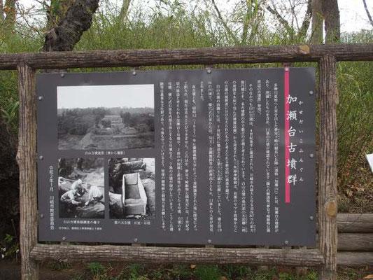 夢見ヶ崎動物公園 古墳