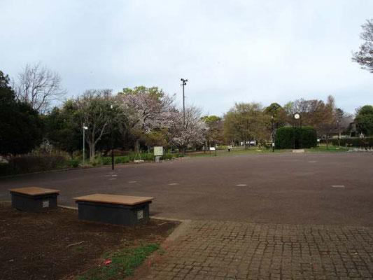 夢見ヶ崎動物公園 広場
