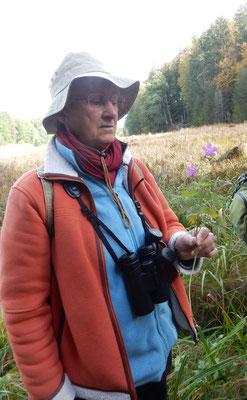 Marianne hat einen Sumpfstorchschnabel entdeckt