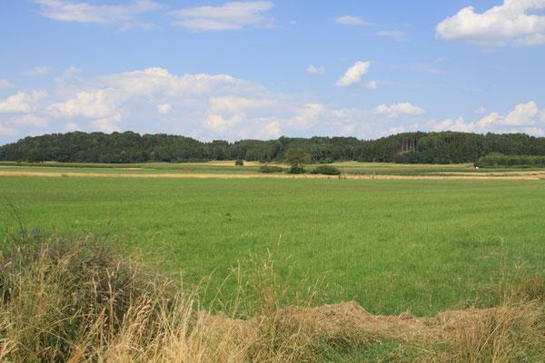 Diese Fläche hat der LBV Augsburg zum Projekt beigesteuert