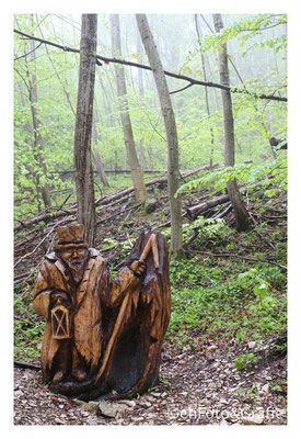 Das Waldmännle