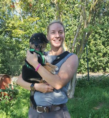 Hundeshooting - Ben und Petra Herr - August 2016 - Erftstadt Liblar - Foto Petra Herr