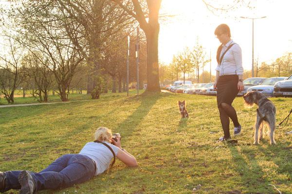 Shooting mit Murphy - Burg Linn Krefeld - Sommer 2013 - Foto: Marcel Mandel