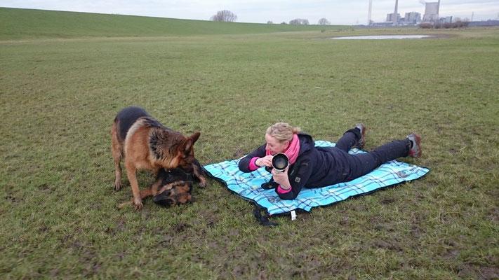 Hundeshooting - Peach, Filou, Nina Endres und Heike - Rhein - Januar 2016 - Foto: Handyfotos von Nina und Heike